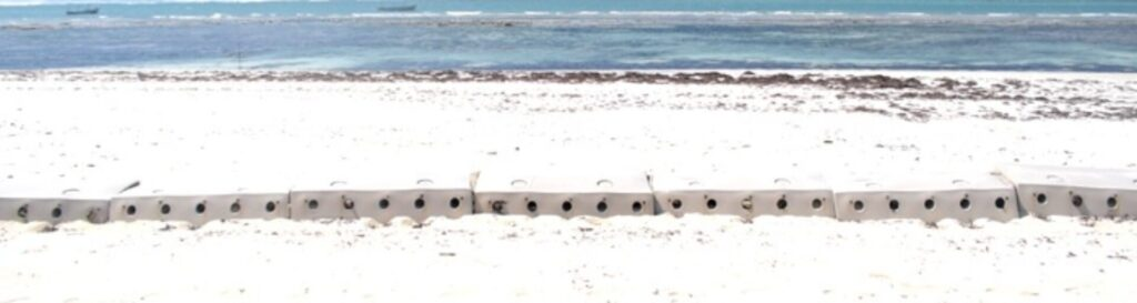 Sandsaver Beach Erosion Solution