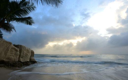Sandsaver Kenya Indian ocean