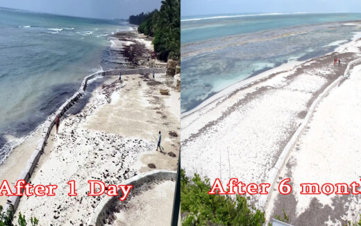 Beach Erosion Solution Before and After