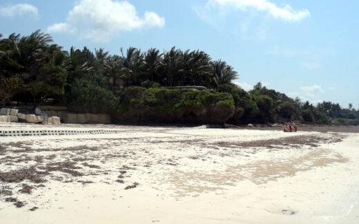 Sandsaver beach erosion barrier