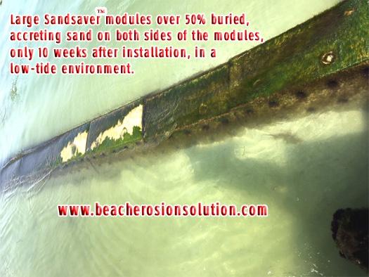 Sandsaver Beach Erosion Solution Gulf of Mexico
